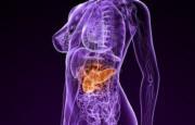 Tumore pancreas_1894.jpg