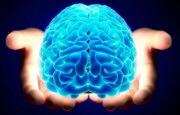 Morbo di Alzheimer_5865.jpg
