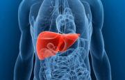 Tumore al fegato_5033.jpg