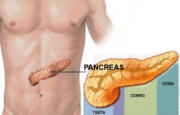Tumore pancreas_8446.jpg