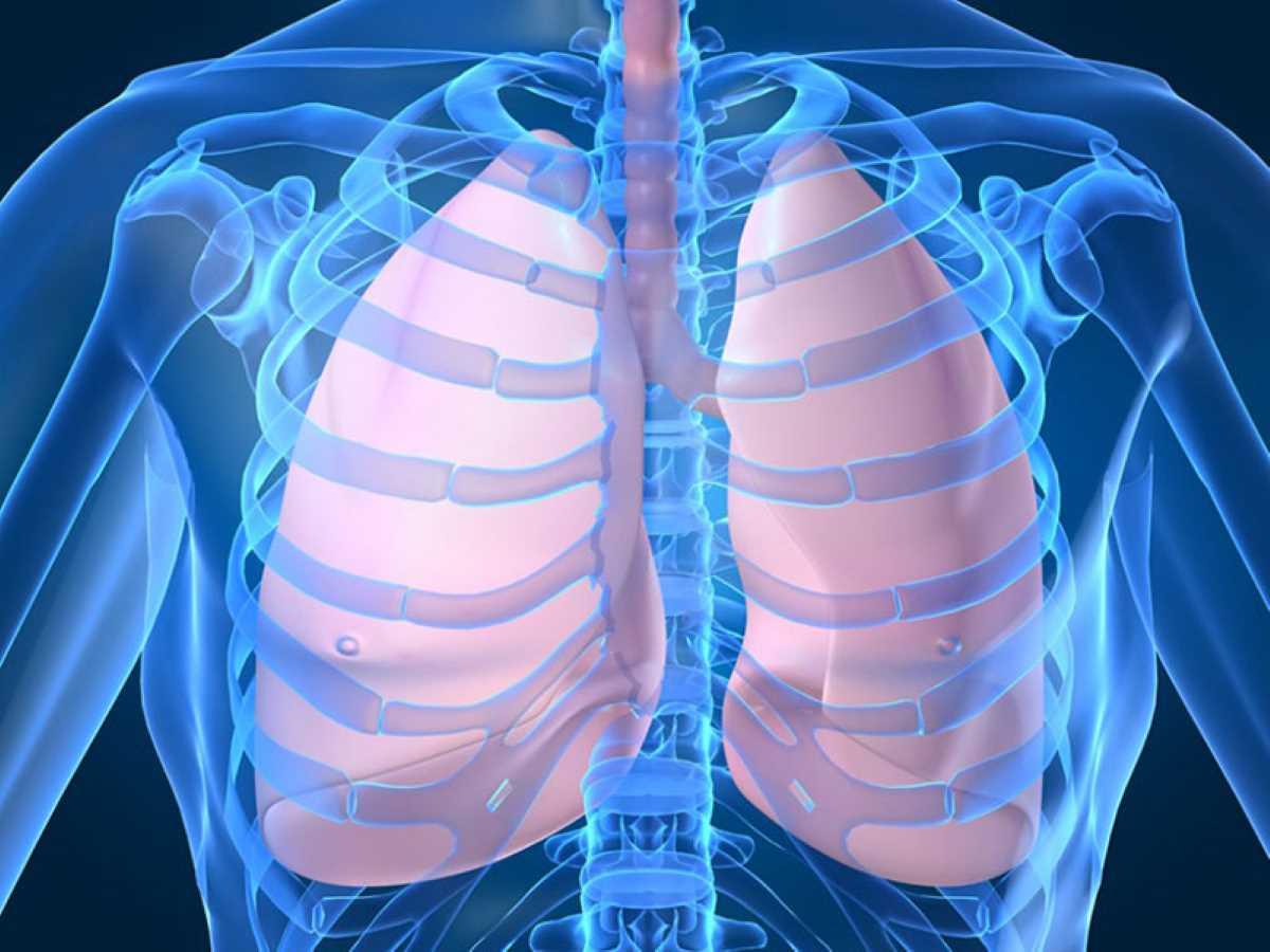 Tumore al polmone_1956.jpg