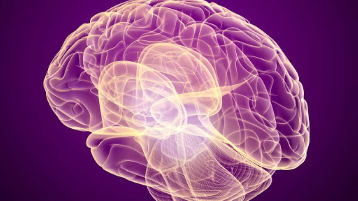 Tumori cerebrali_4205.jpg